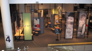 Coming down the stairs: Wonder Years at the Science Museum of MN